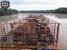 Expedição Pantanal: Porto Jofre a Corumba - MT (via balsa)